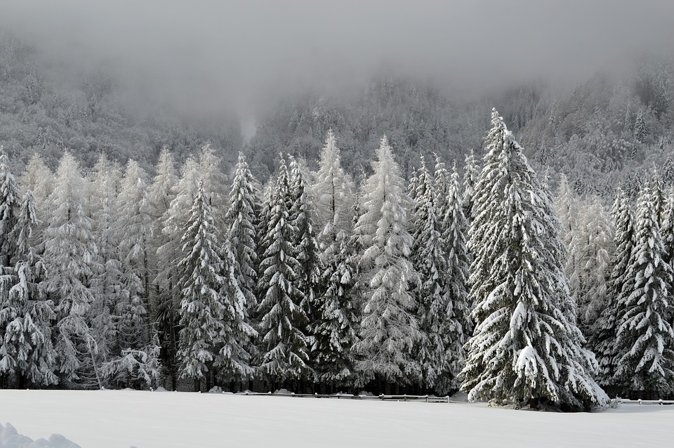 winter-1086583_960_720